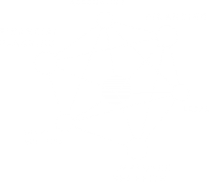 sfm - strategic financial management - products & services model - the Molecule